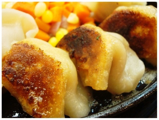 China Hunan Iron Plate Dumpling (close).