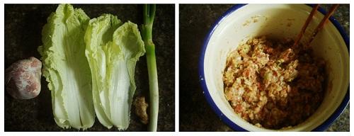 Make Chinese Dumplings: Ingredients.