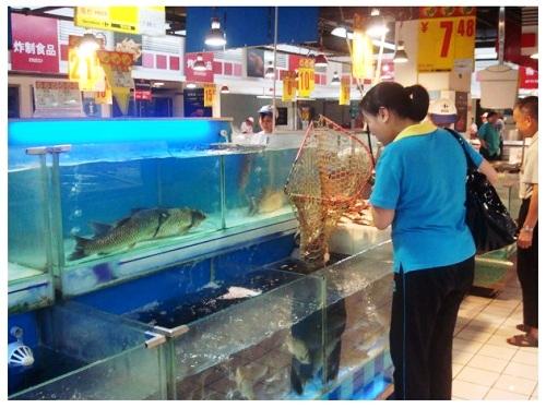 China Food Supermarket Fresh Fishes.