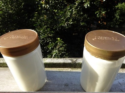 Containers to make yogurt.
