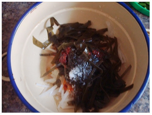Chinese Kelp and White Radish