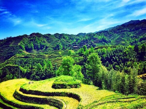 Guangxi Guilin Dragon Backbone's Rice Terraces