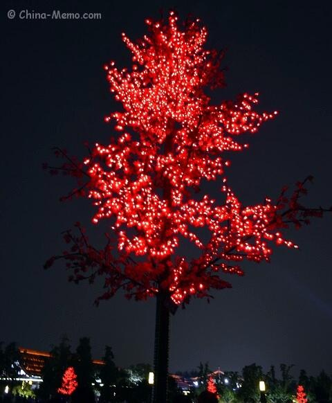 Xian Dayan Pagoda Square Tree